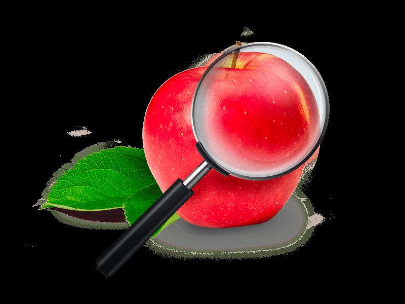 fruitplant consulenza