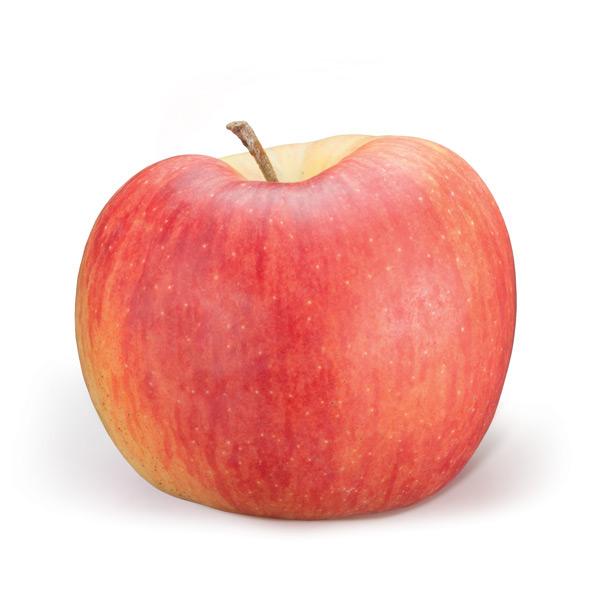 fruitplant varieta mele